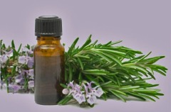 Rosemary-essential-oil